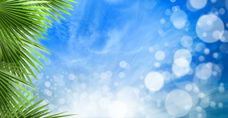 abstract spring backgrounds with beautiful bokeh and palm leaves photo