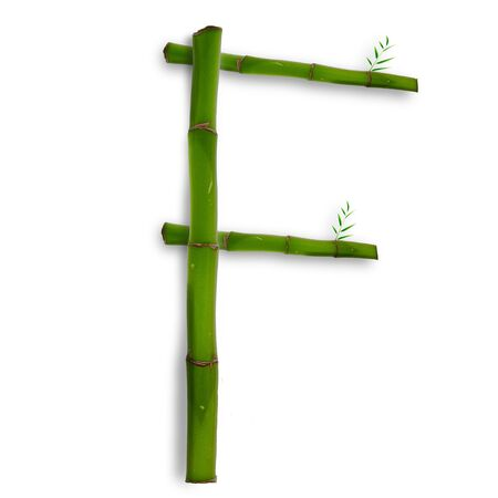 One capital letter of bamboo alphabet with shadow over white Stock Photo - 13242280