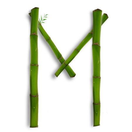 One capital letter of bamboo alphabet with shadow over white photo