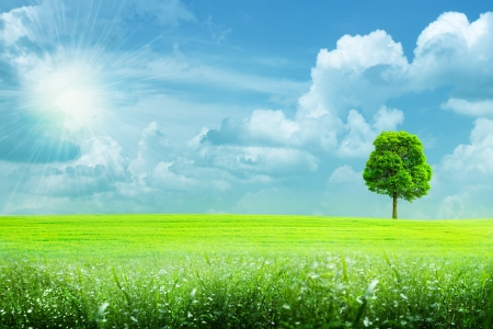 natural background: abstract summer rural landscape under the blue skies and bright sun