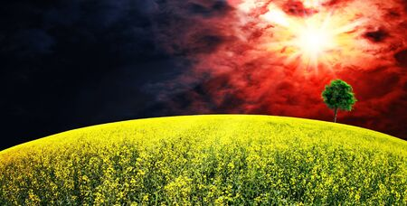 Supernova  Abstract summer rural landscape Stock Photo - 13793344