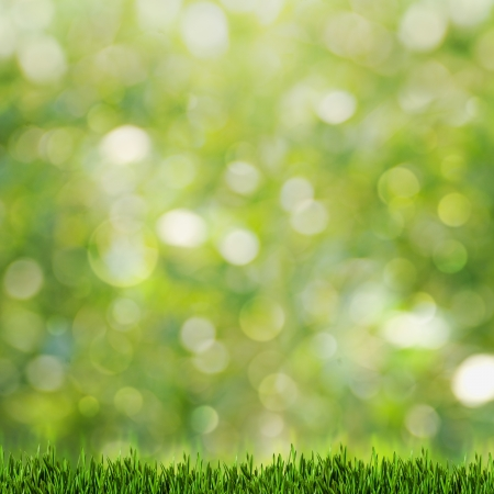 Green grass over abstract summer backgrounds with beauty bokeh photo