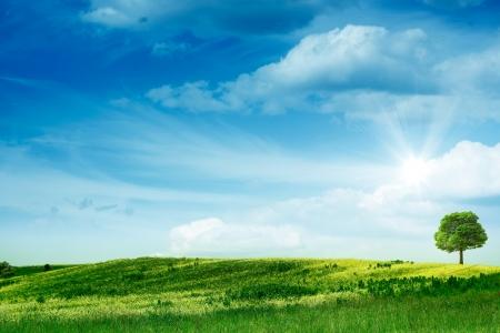 青山。抽象夏天背景。