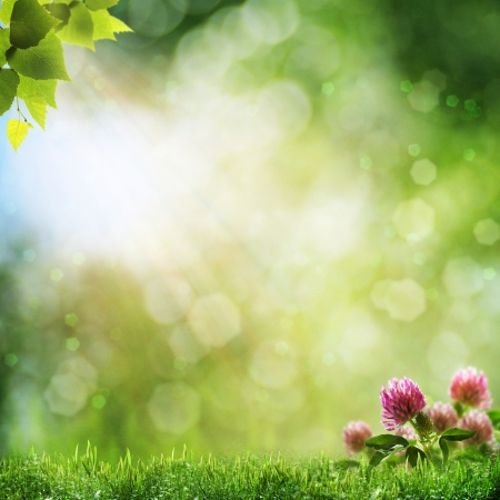 good nature: Abstract natural backgrounds with beauty bokeh Stock Photo