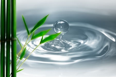 water droplets and bamboo. natural backgrounds photo