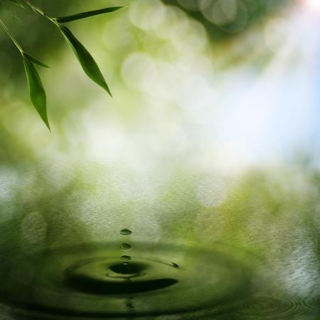 Zusammenfassung orientalischen Hintergrund mit Bambus Laub