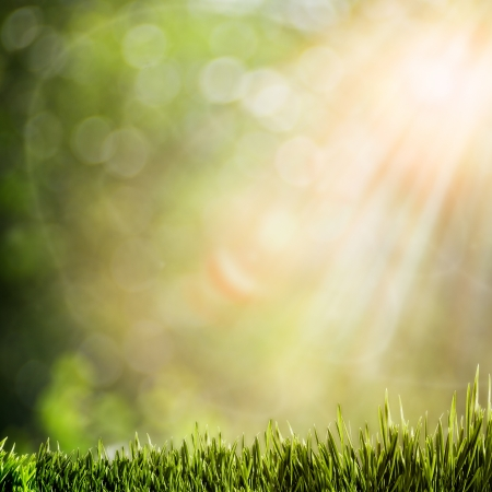 abstract natural backgrounds with glowing sunlight