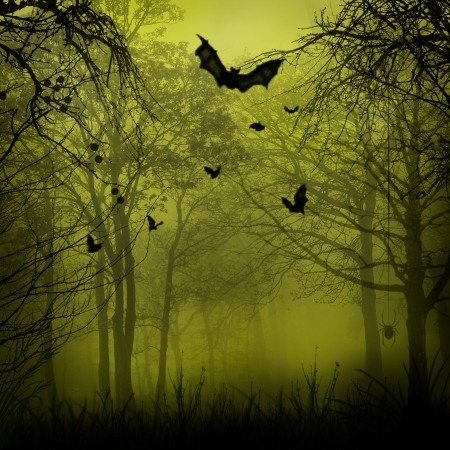 scary forest: Abstract Halloween backgrounds with copy space for your design Stock Photo