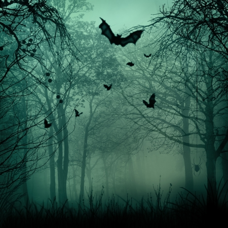 spooky tree: Abstract Halloween backgrounds with copy space for your design Stock Photo