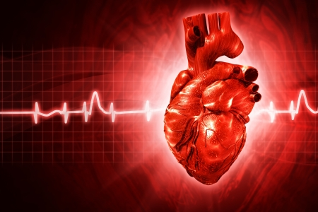ecg: ECG abstract backgrounds with human 3D rendered heart Stock Photo