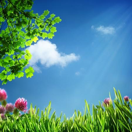 Abstracte natuurlijke achtergrond voor uw ontwerp