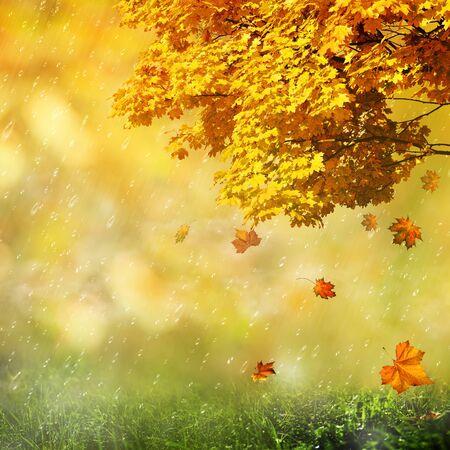 Background Season Seasonal Abstract Backgrounds