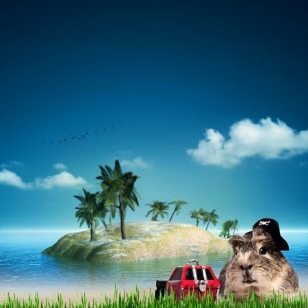treasure Island. Funny  sea and ocean backgrounds photo