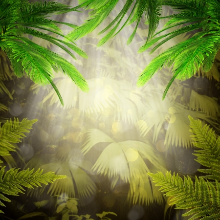 palm computer: Early morning in the tropical forest. Abstract natural backgrounds