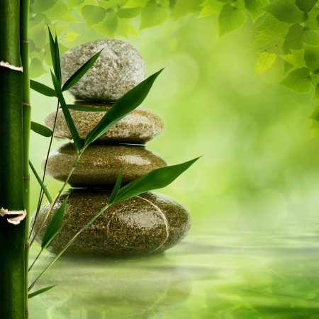 wellness environment: Natural zen backgrounds with bamboo leaves and pebble for your design
