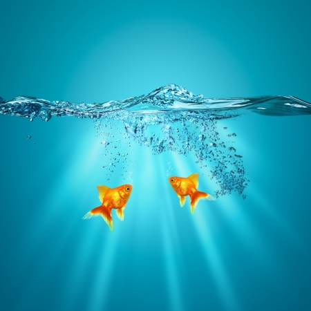 Funny underwater backgrounds for your design Stock Photo - 17236257
