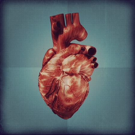 Human heart vintage blueprint. Grunge medical backgrounds photo