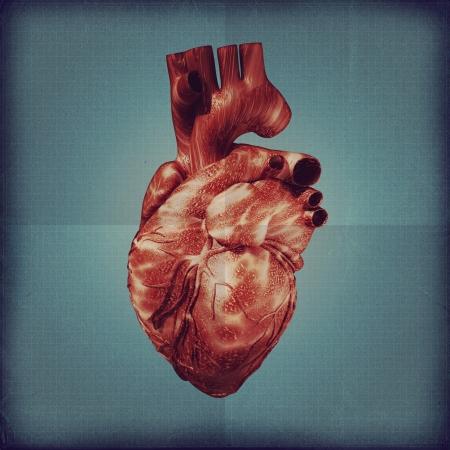 Human heart vintage blueprint. Grunge medical backgrounds Stock Photo - 17249402