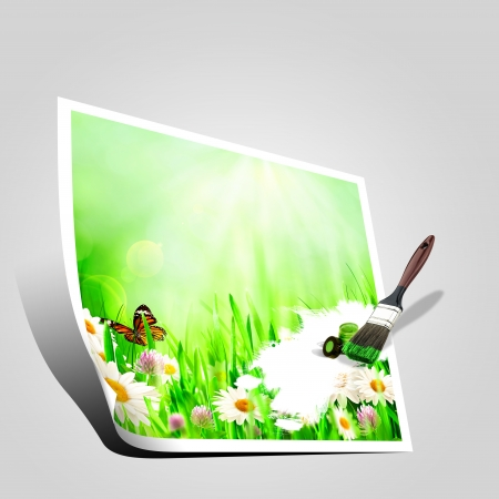 beauty center: Beautiful spring backgrounds with chamomile flowers