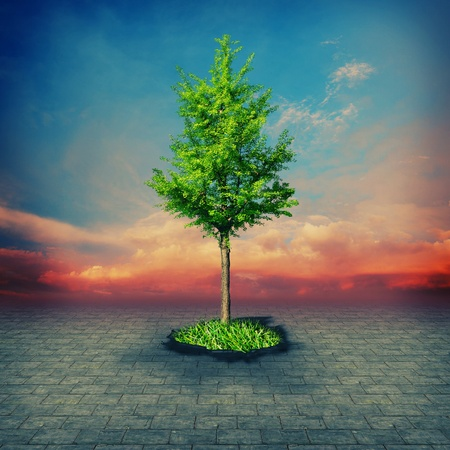 ���stone age���: Stone Age. Abstract environmental backgrounds for your design Stock Photo