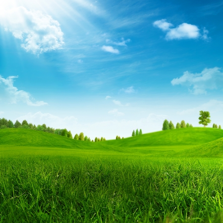 organic background: Beauty summer day on the green hills Stock Photo