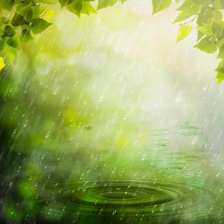 rainy season: Summer rain. Abstract natural backgrounds