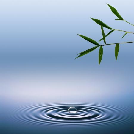 Fondos abstractos ambientales con bambú y gotas de agua