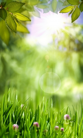 Green world, abstract environmental backgrounds for your design photo