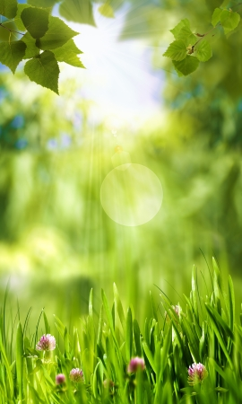 Green world, abstract environmental backgrounds for your design Standard-Bild