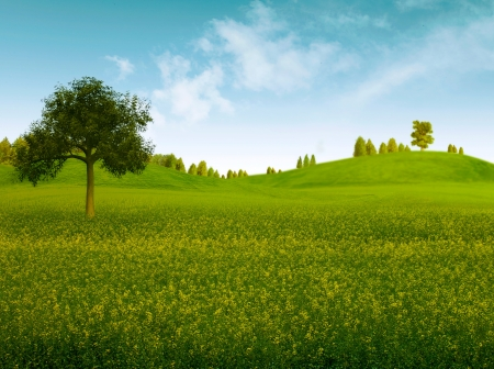 non urban: Bright summer afternoon  Natural backgrounds  Stock Photo