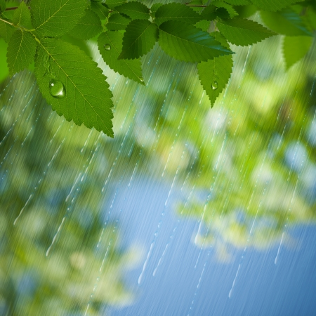 Summer Rain  Abstract environmental backgrounds for your design Фото со стока - 20214498