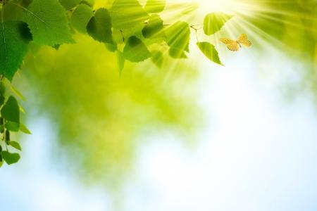 Beauty Summer Day Abstract milieu-achtergronden voor uw ontwerp