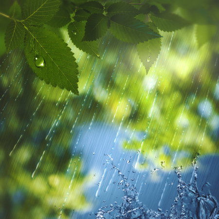 Summer rain, abstract seasonal background  photo