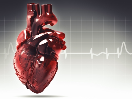 heart ecg trace: Health and medical background