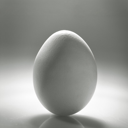 ovoid: White egg over desk with reflection and shadow
