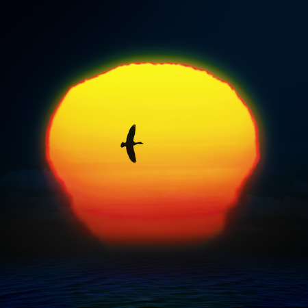 Bright sun on sunset sky with birds silhouette, abstract background photo
