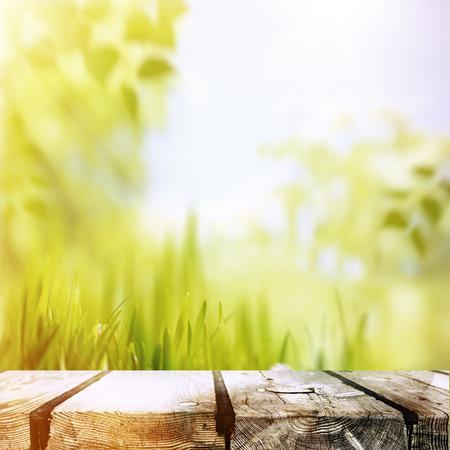 美丽的夏日午后,抽象的环境背景