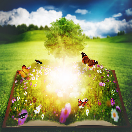 Open book with Tree of Knowledge, abstract environmental backgrounds photo