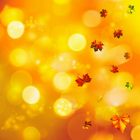 Abstract autumnal backgrounds with beauty bokeh photo
