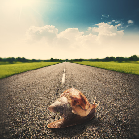 Speedy snail, abstract funny travel backgrounds