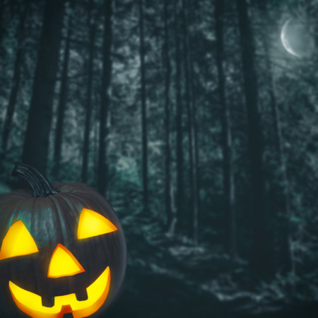 horror background: Spooky forest. Abstract Halloween backgrounds for your design