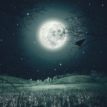 Halloween night on the spooky meadow. Abstract holidays backgrounds 스톡 콘텐츠