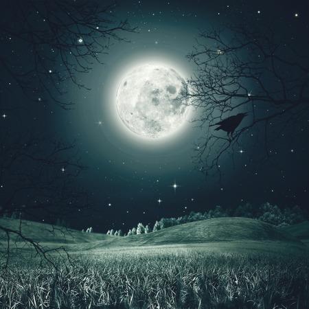 Halloween nacht op de spookachtige weide. Abstracte vakantie achtergronden Stockfoto