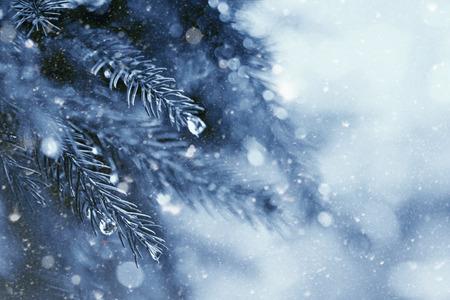 begin van de winter in het bos, abstracte natuurlijke achtergronden