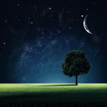Sterrige nacht. Abstracte natuurlijke achtergronden voor uw ontwerp