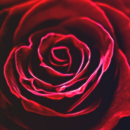 fractals: Fractally. Red rose in fractals design Stock Photo