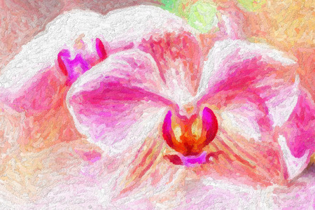 fine art: Beauty spring backgrounds with pink orchid, fine art simulation from real photo Stock Photo