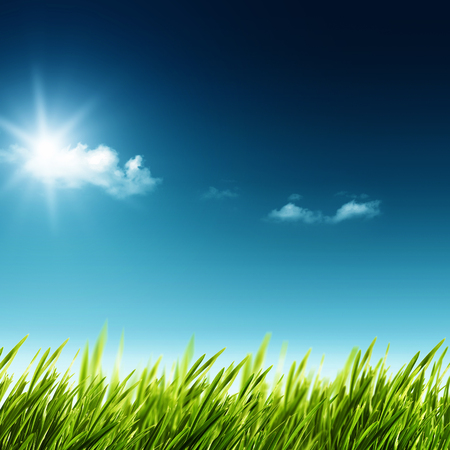 vastness: Beauty summer day. Abstract natural landscape with green grass and blue skies