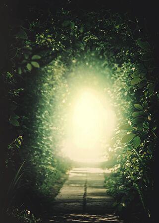 Teleport zu einem anderen Universum. Tunnel in den Wald. Natürliche Hintergründe