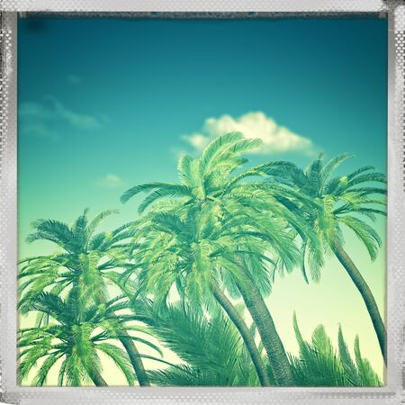 retro backgrounds: Retro view. Summer trip backgrounds with palm tree